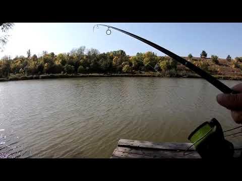 CATCHING FISH WITHOUT FOOD ЛОВЛЯ САЗАНА БЕЗ КОРМА 2020   00:02:56   негодующий самонаслаждение