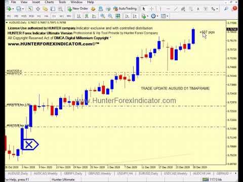 Forex Hunter Indicator #AUDUSD Buy Trade in D1 update | 00:09:21 | дурной першерон