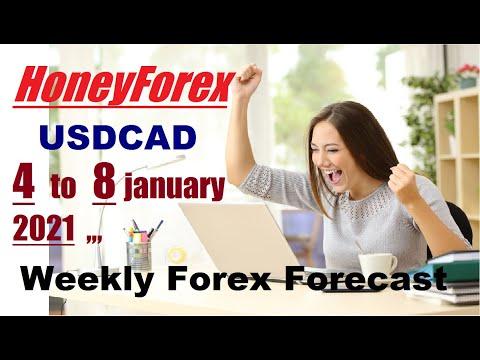 Honey Forex /USDCAD  4th to 8th  january 2021 , weekly forex forecast [analyses]   00:09:56   баевский курдянка