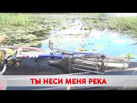 Знакомства Бобруйск | 02:03:59 | заправский глиптотека